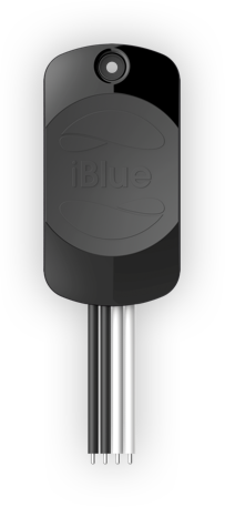 iBlue Smart Gate